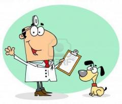 Consulta y valoración medica veterinaria