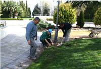Servicios de jardinero